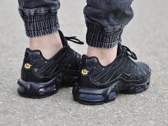 Nike Air Max Plus TN 604133-050